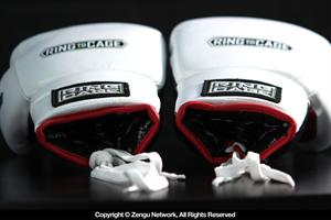 MiM Foam Sparring Gloves (Lace Up)